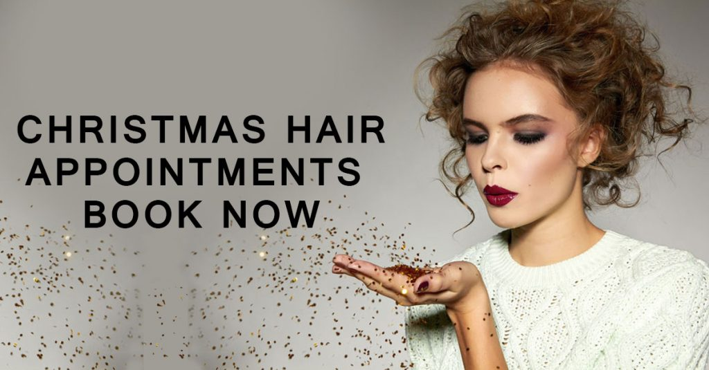 Christmas Hair Appointments